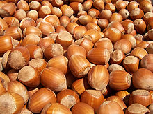 Hazelnuts from the Common Hazel