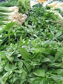Basil and green onions, common culinary herbs
