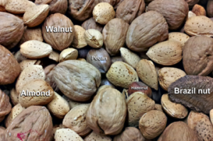 Some common nuts