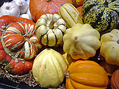 An assortment of winter squashes.