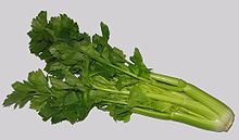 Head of celery, sold as a vegetable. Usually only the stalks are eaten.