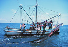 Double-rigged shrimp trawler with one net up and the other being brought aboard