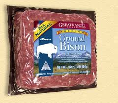 Great Range Ground Bison