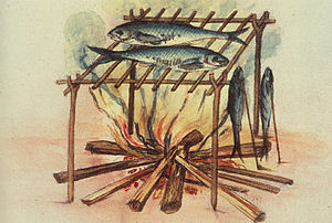 Equipment for curing fish used by the North Carolina Algonquins, 1585