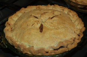 Wild Idea Buffalo Buffalo Mincemeat Pie