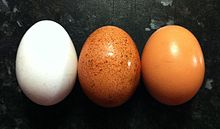 White, speckled (red), and brown chicken eggs