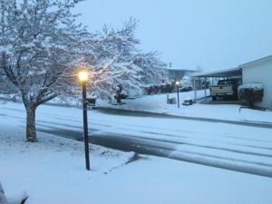 Snow NOV 17 14 003
