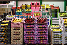 Different kinds of apple cultivars in a wholesale food market
