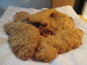 Pilgrim Chicken Strips