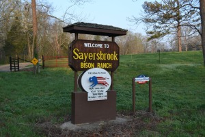 sayersbrook-bison-ranch-sign