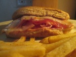 Baked Ham, Salami, and Provolone Mini Sub w Baked Fries 009